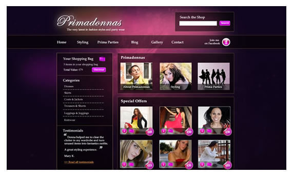 Website Design Tipperary - Primadonnas, Nenagh, Co. Tipperary